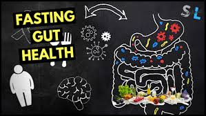 fasting is good for gut bacteria